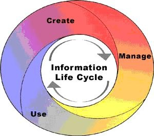 Electronic Records Management Systems Software Lifecycle Process